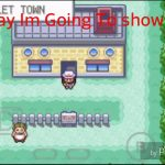 Pokemon Fire Red Wild Pokemon Cheat