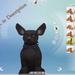 The Sims 4 Cats Dogs Activation Keys Code Free Serial Keygen