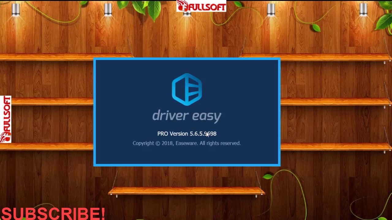 driver easy professional 5.6.5