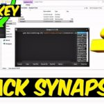 CRACK Synapse X (+ FREE KEYS) Download Synapse X v1.4.5b and