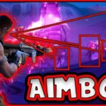 FORTNITE HACK DOWNLOAD AIMBOT ESP FORTNITE HACK PC PS4