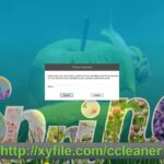 CCleaner Professional Plus License Key + Full Crack Latest